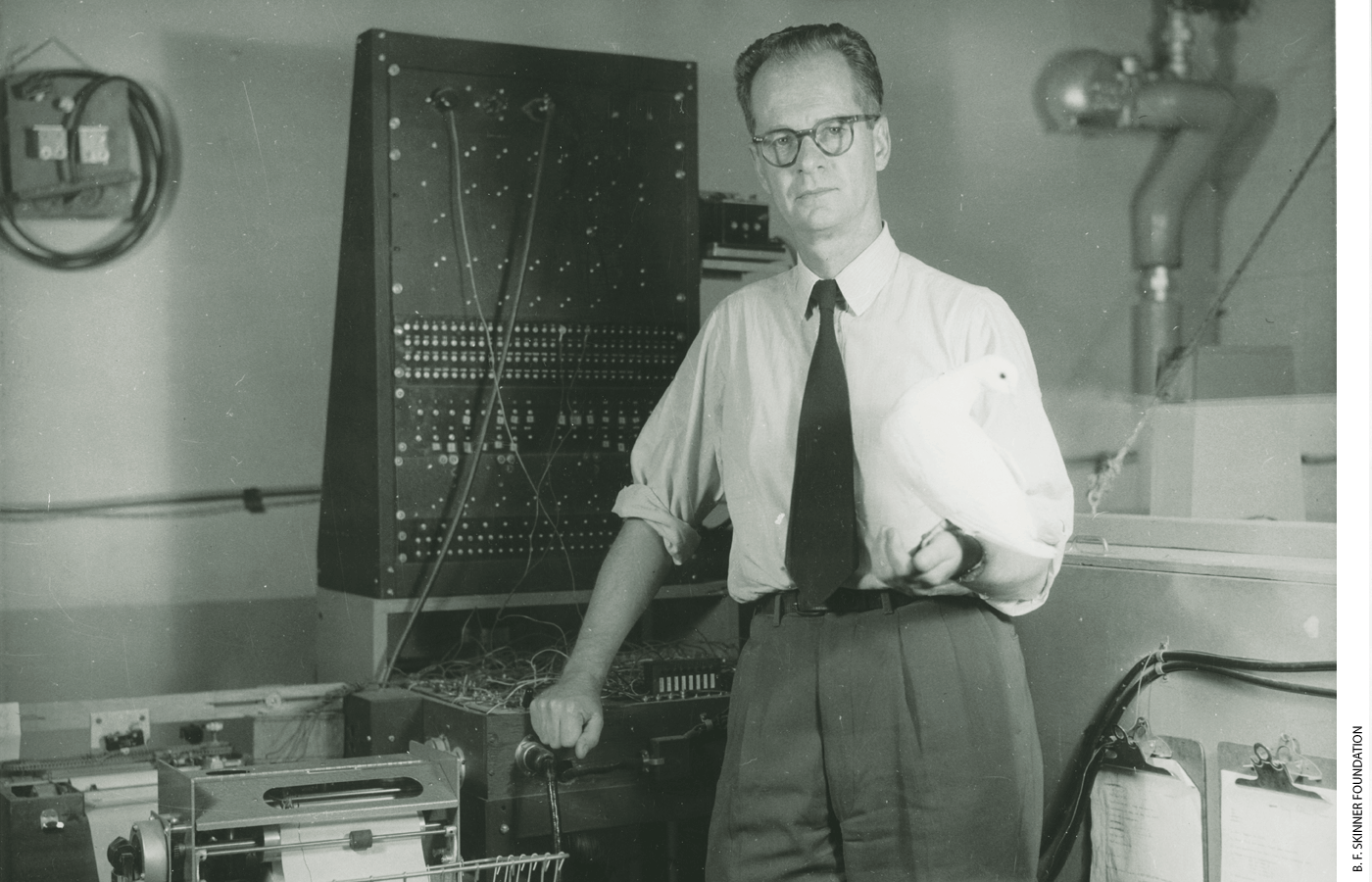 """B. F. Skinner taught pigeons to play ping-pong using """"operant conditioning."""" His teaching box pioneered methods now used in computer-aided instruction."""